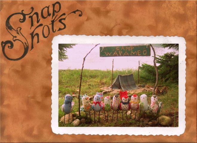 camp wapameo for birds