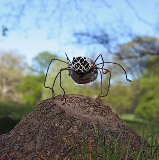 prospect spider