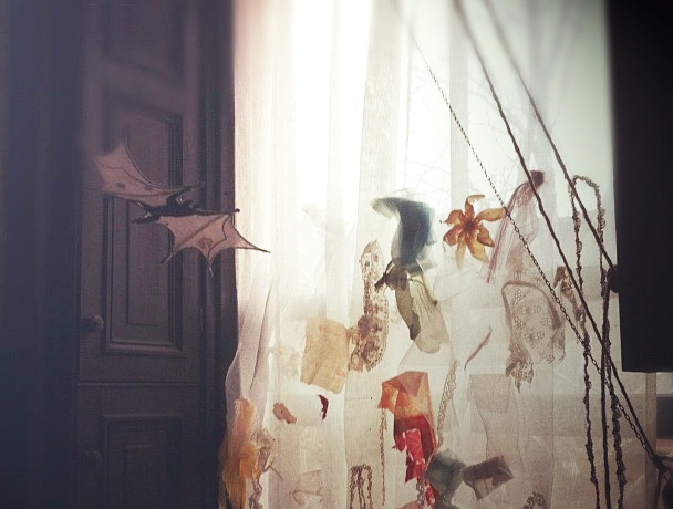 window and bat