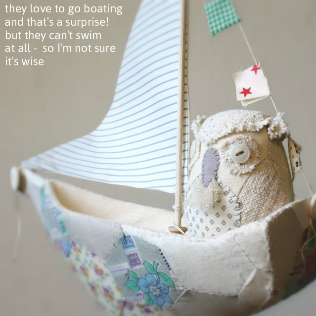 owl boating