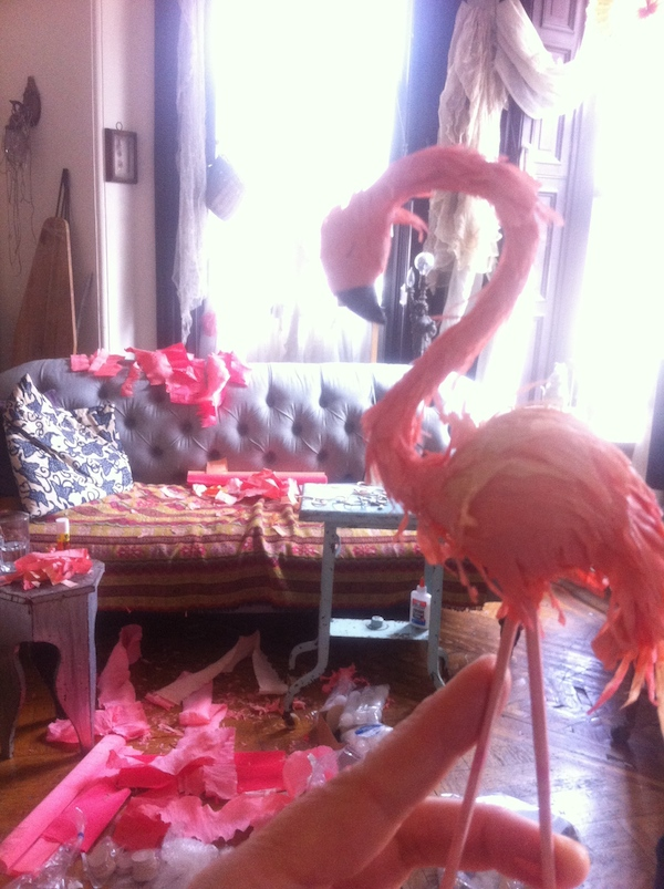 flamingo mess