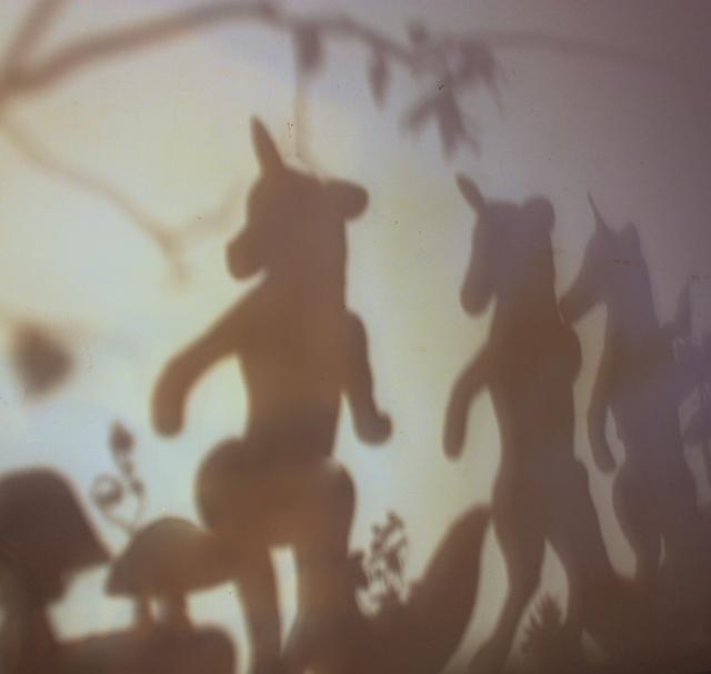 fortuny shadows