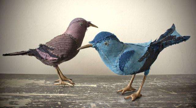 songbirds 20016