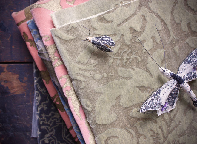 a dragonfly and fortuny printed velvet