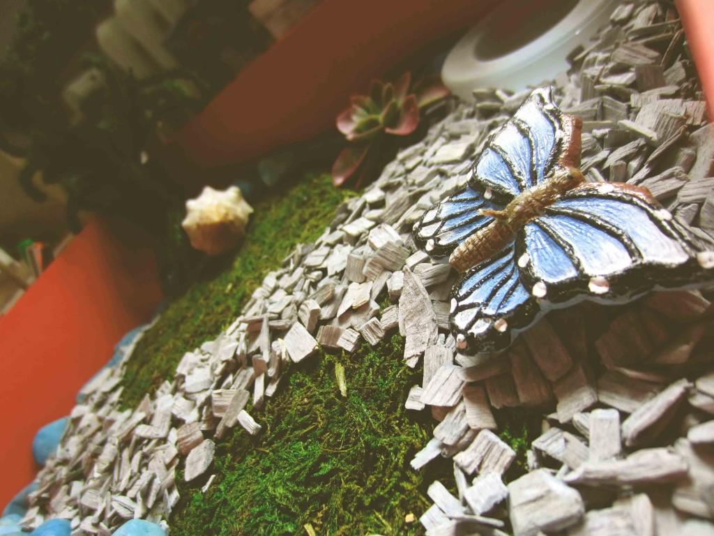 Minigardening