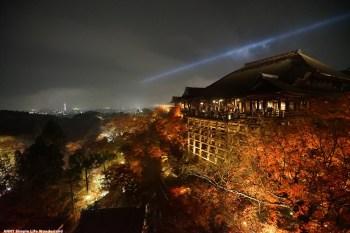 【京阪自由行】京都推薦景點 必去清水寺 ♥ 楓葉季夜楓超美