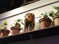 Tucked away on a shelf full of goblin heads and mandrake pots was Luna's lion headdress.