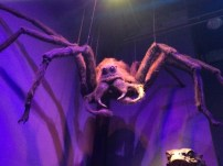 Aragog looks just as scary in real life as he does on film.