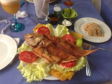 Annys Adventures Blog - Cartagena Islands