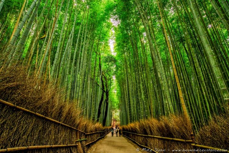 The beautiful Arashiyama Bamboo Grove in Kyoto.