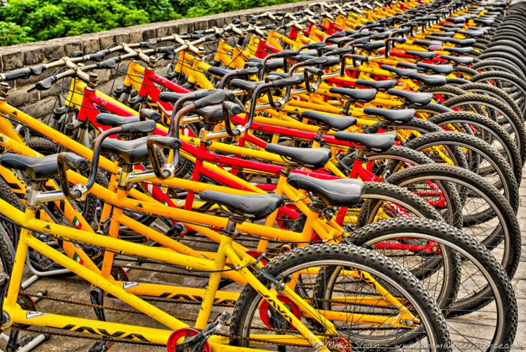 Bicycles galore!