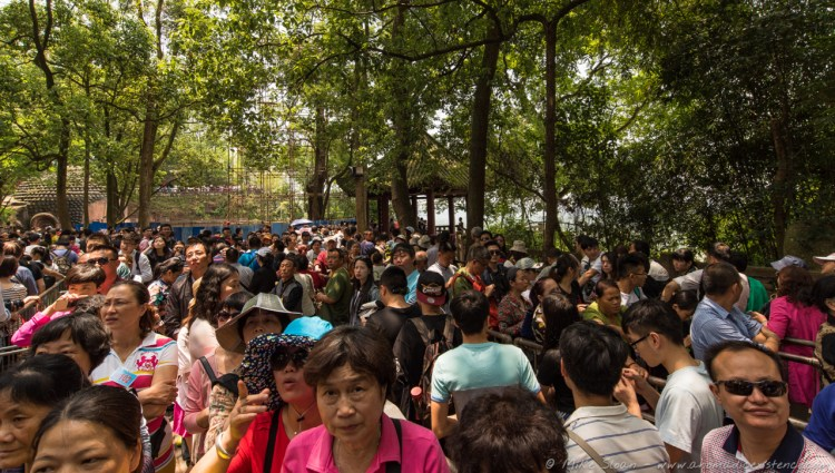 The crazy crowds lining up to go down to the bottom viewpoint - it took 45 minutes to get through!