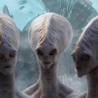 Planetary Scientist Alan Stern Has Wild Theory on Alien Life