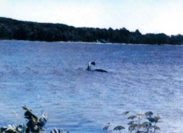 Champ ou monstre du lac Champy