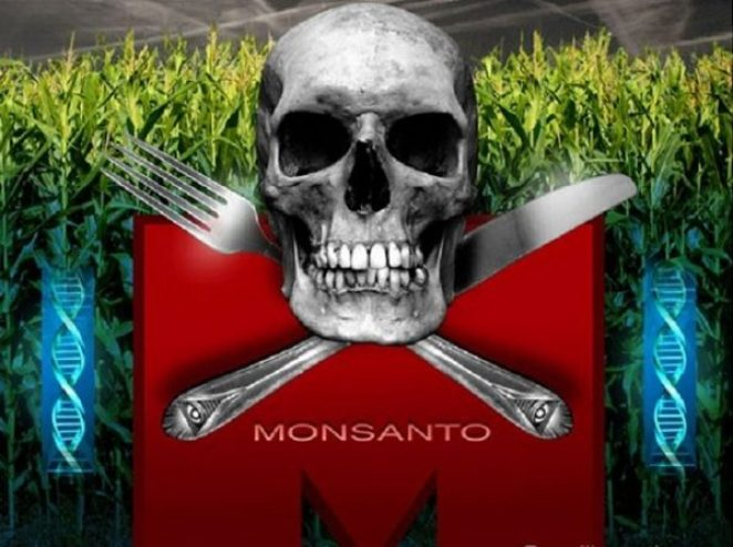 McDonald's and Monsanto
