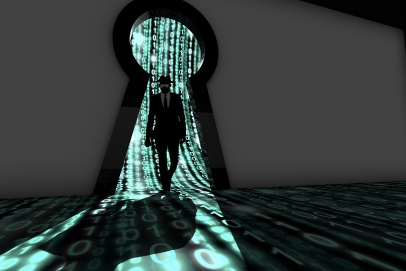 Data Privacy from Software Backdoors