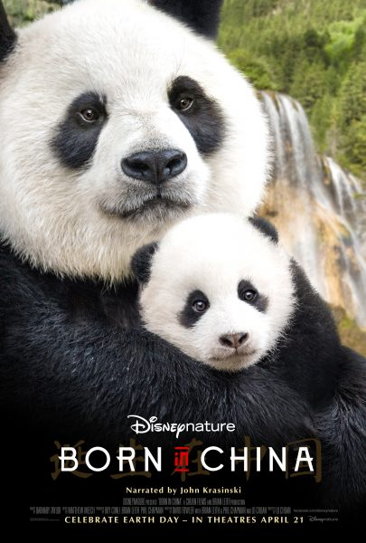 Disneynature Born China Activity Packet