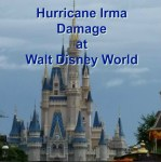 Damage Reported at WDW Due to Hurricane Irma