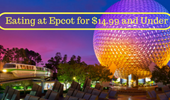 Eating in Epcot for $14.99 and Under