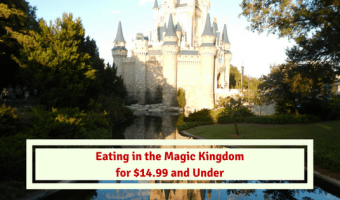 Eating in the Magic Kingdom for $14.99 and Under!