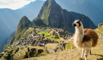 The Top 5 Reasons to Travel to Machu Picchu