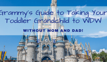 Grammy's Guide to Taking a Toddler Grandchild to WDW WITHOUT Mom and Dad!