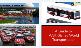 A Guide to the WDW Transportation System