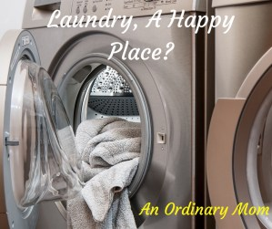 The Drudgery of Laundry Irresistably Overcome
