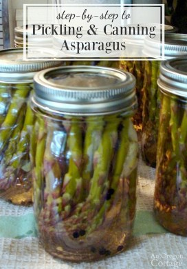 Your step-by-step to pickled and canned asparagus