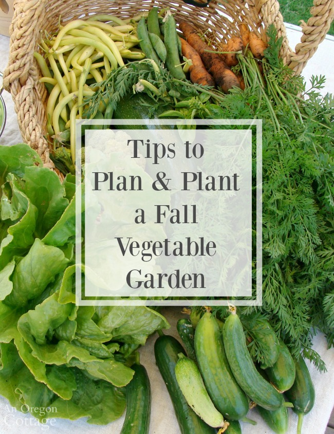 Tips to plan and plant a fall vegetable garden for Gardening 101 vegetables