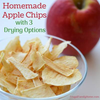 Homemade Apple Chips at Frugal Family Home