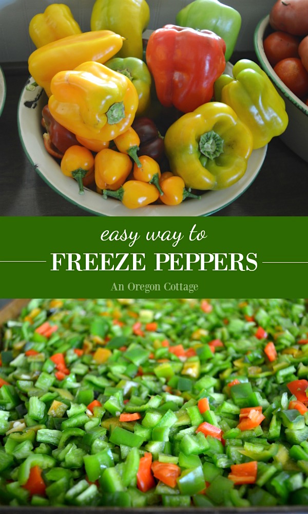 Freeze peppers - both hot and sweet - easily to use in recipes all winter long. Freezing peppers is a quick way to preserve your in-season produce.