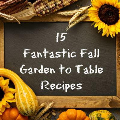 15 Fall Garden to Table Recipes at The Freckled Rose