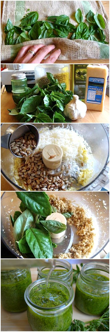 How to Make Pesto with Sunflower Seeds - frugal and delicious