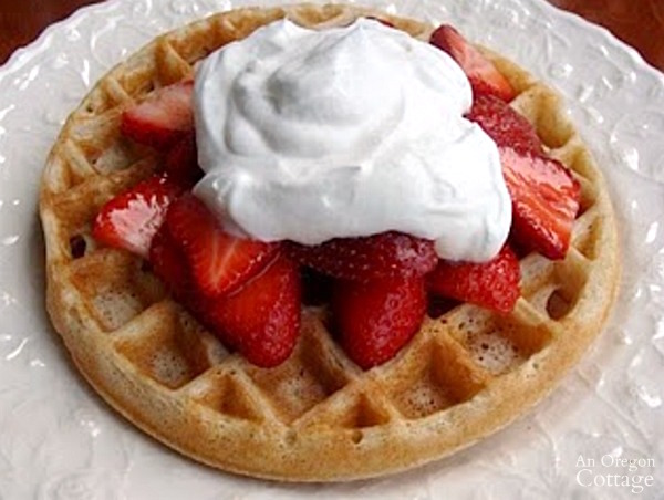Sourdough tips-make easy recipes like waffles