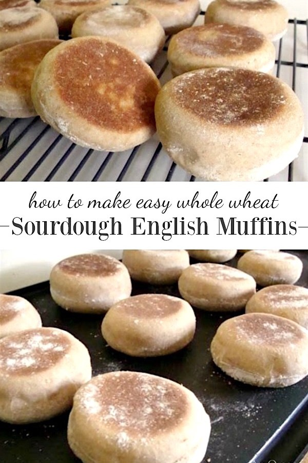 Easy tutorial for whole wheat sourdough English muffins.