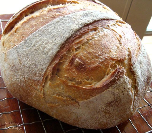 Sourdough Artisan Bread Crust