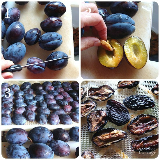 Steps to dry Italian plums