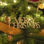 Christmas Tree & Monday's Menu