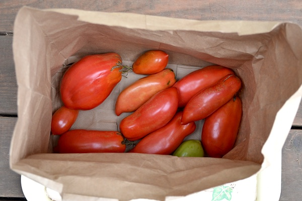 Ripened Tomatoes in Bag :: An Oregon Cottage
