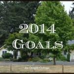 2014 Goals {& 2013 Recap}