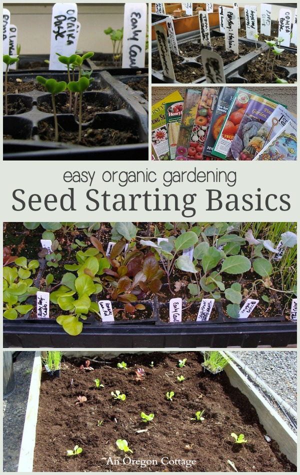 Easy Organic Gardening Seed Starting Basics