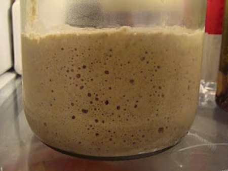 How to Grow, Keep & Use Sourdough - Sourdough Starter in the Fridge - An Oregon Cottage