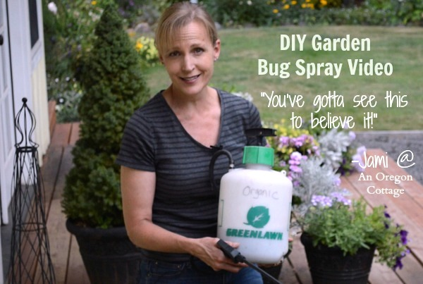 DIY Garden Bug Spray That Really Works Video - An Oregon Cottage