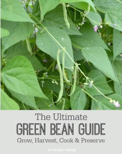 The Ultimate Green Bean Guide