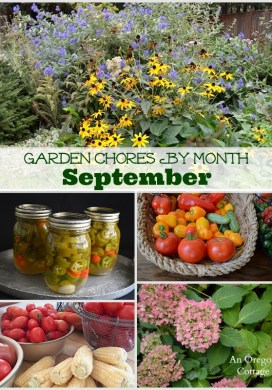 Garden Chores for September- Vegetables, Flowers, Fruits & Lawn