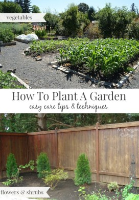 How to Plant a Garden {the Easy Care Way}