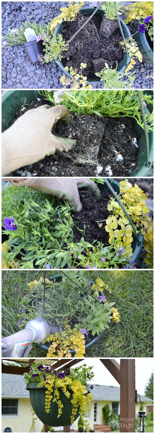 Tips for Planting Flower Pots Organically-Planting Hanging Containers