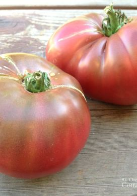 Three Things 8.01.15: Record Tomatoes, Packing, Favorite Razor