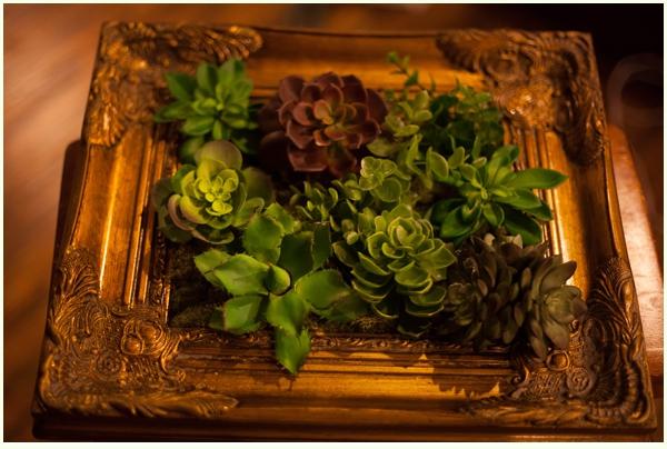DIY Faux succulent frames via Run to Radience